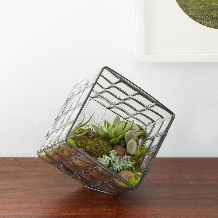 Blown glass terrarium from West Elm Staycation Decor: Learning to Relax at Home