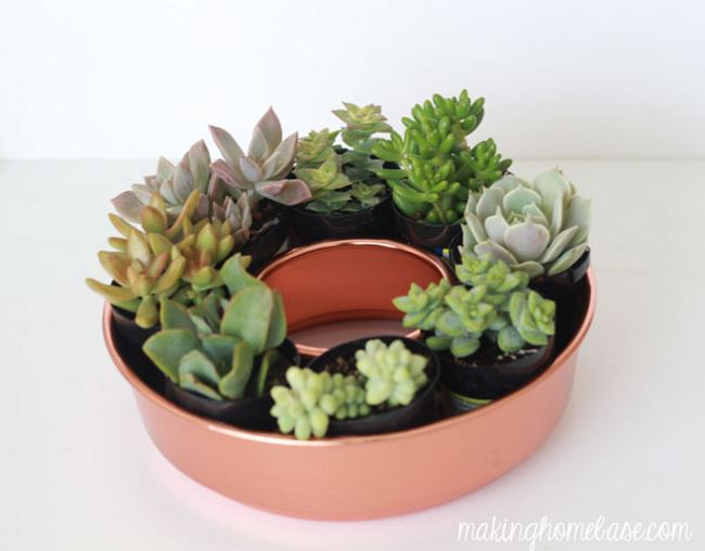 Bundt pan succulent planter