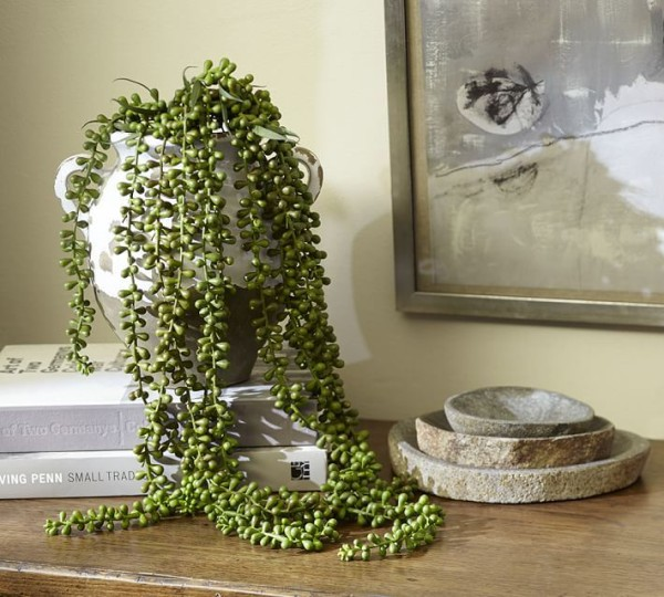Faux succulent plant from Pottery Barn