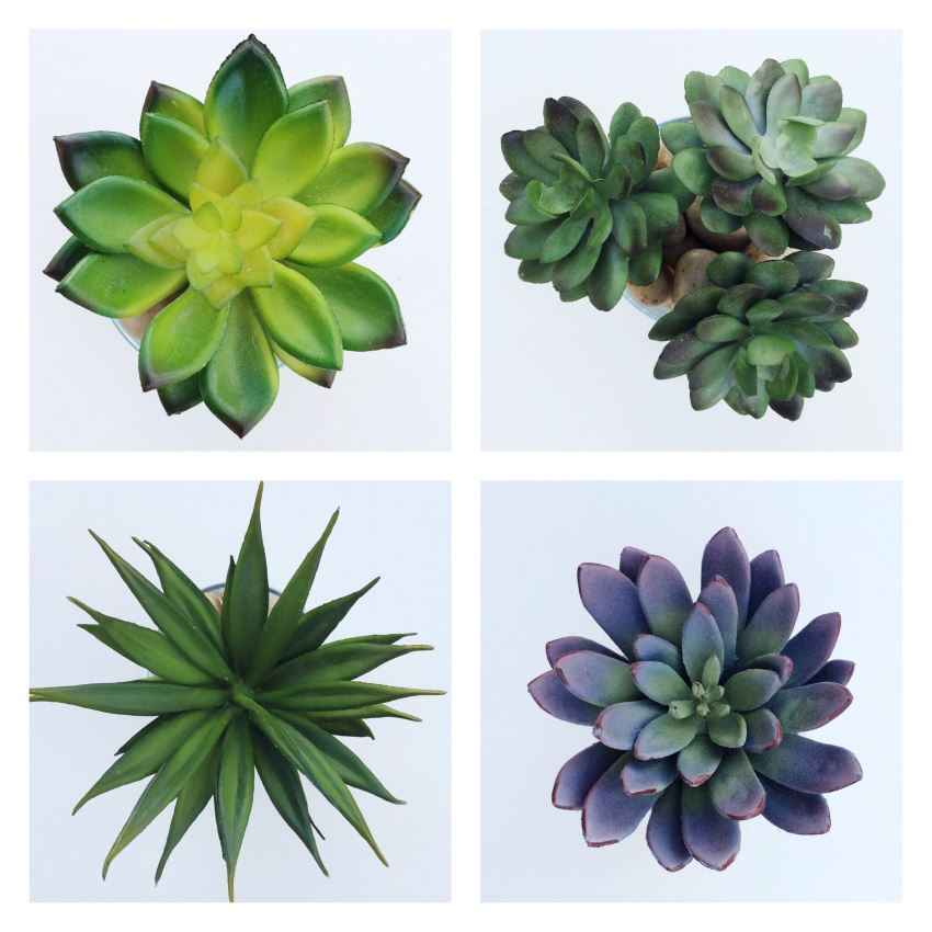 Faux succulents from Etsy shop A Golden Garden