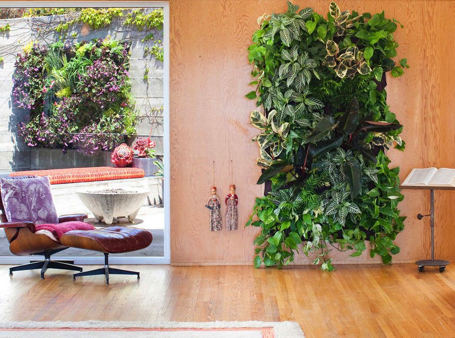 Lovely Vertical Garden on Warm Wooden Wall
