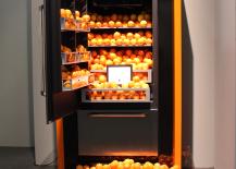 Orange-Refrigerator-Filled-with-Oranges-217x155
