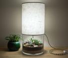 Plant-filled Terrarium Lamp