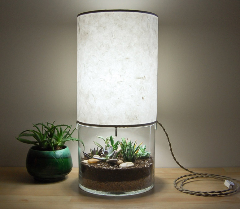 Plant-filled Terrarium Lamp