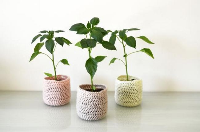 Plastic bottle planter with a crochet cosy
