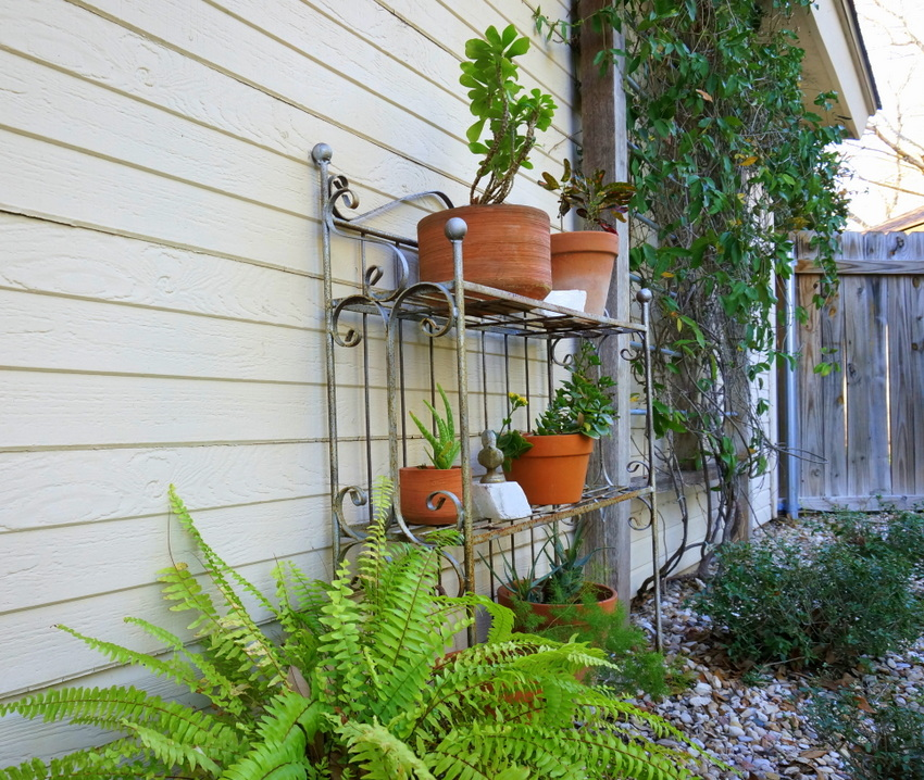 Potted plants get a facelift