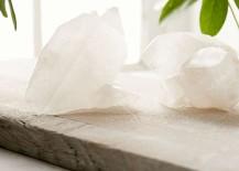 5 Low-Maintenance Houseplant Alternatives