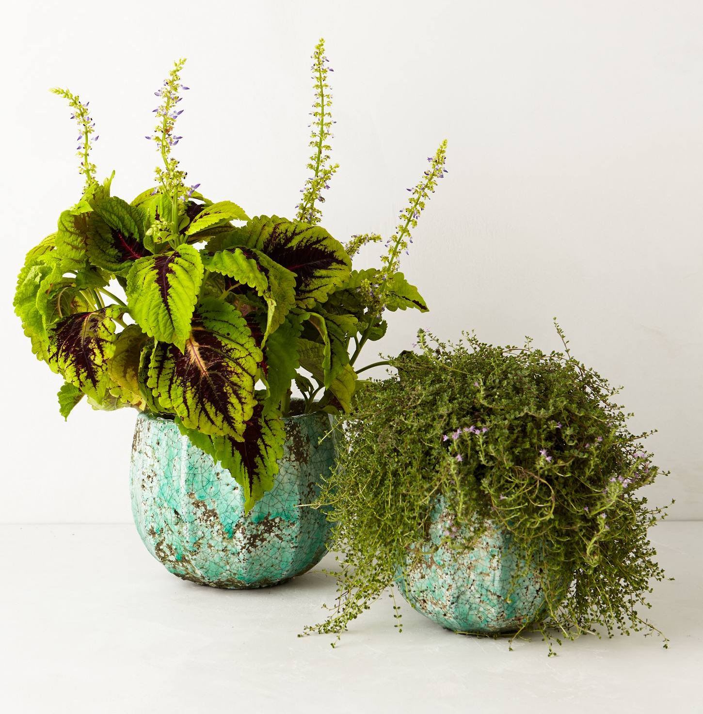 Turquoise garden pots from Anthropologie