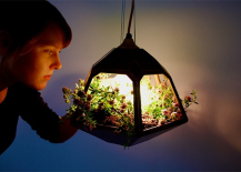 Vicky Pendant Lamp Filled with Plants
