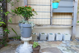 A plant-filled trellis area  How to Style a Trellis A plant filled trellis area 270x180