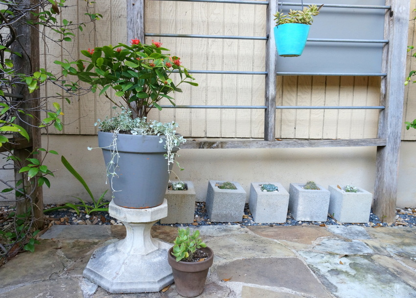 Colorful accents in a plant-filled trellis area