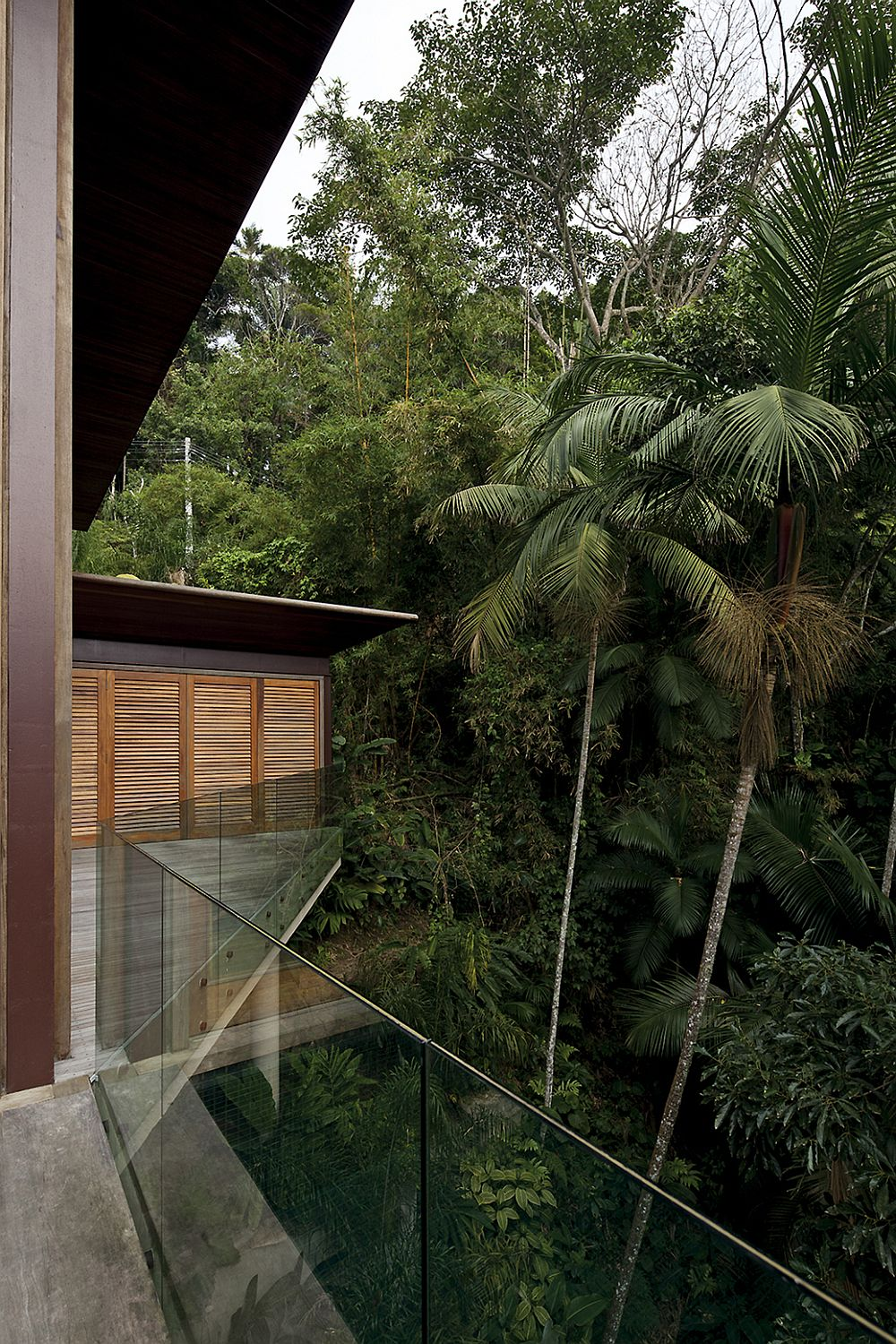 Balcony around the house overlooking the canopy