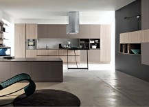 Beautiful kitchen that blurs the line between the kitchen and the living