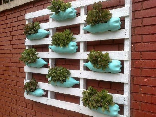 Bottle and pallet garden