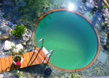 Circular-Natural-Pool-217x155