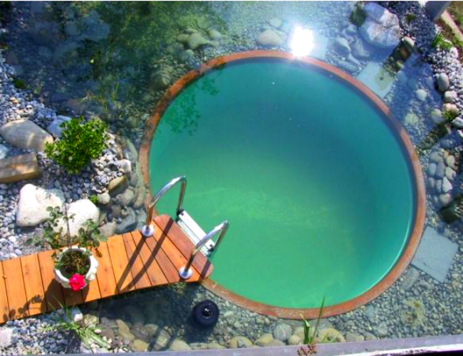 A natural pool can come in any kind of shape