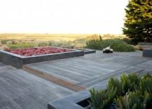 Clusters-of-plants-in-raised-garden-beds-217x155