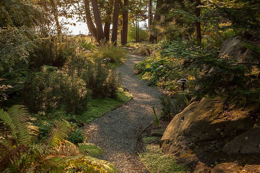Curated walkway through the natural canopy around the Saturna Island Retreat