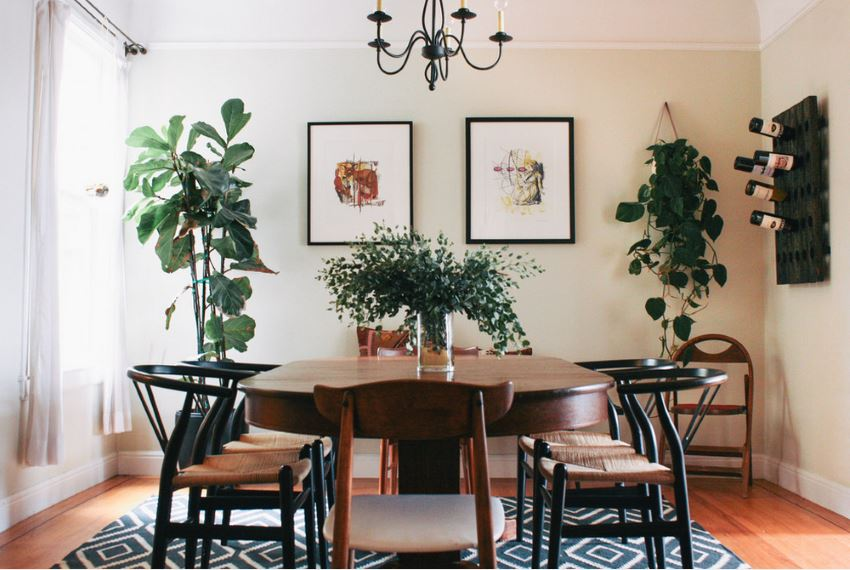Dining room with plants and a patterned rug