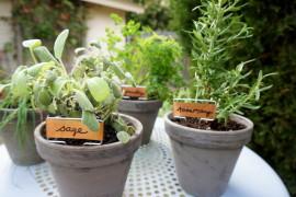Easy tabletop herb garden  8 DIY Mother's Day Gifts You Can Make Yourself Easy tabletop herb garden 270x180