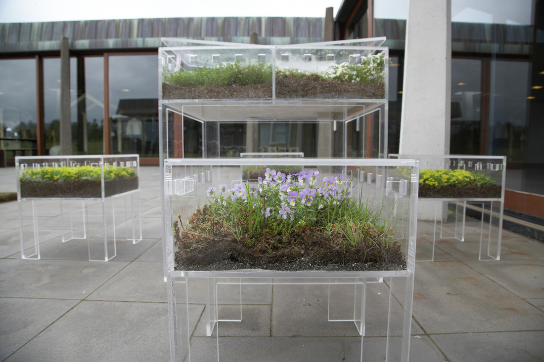 Furnibloom Planted Furniture