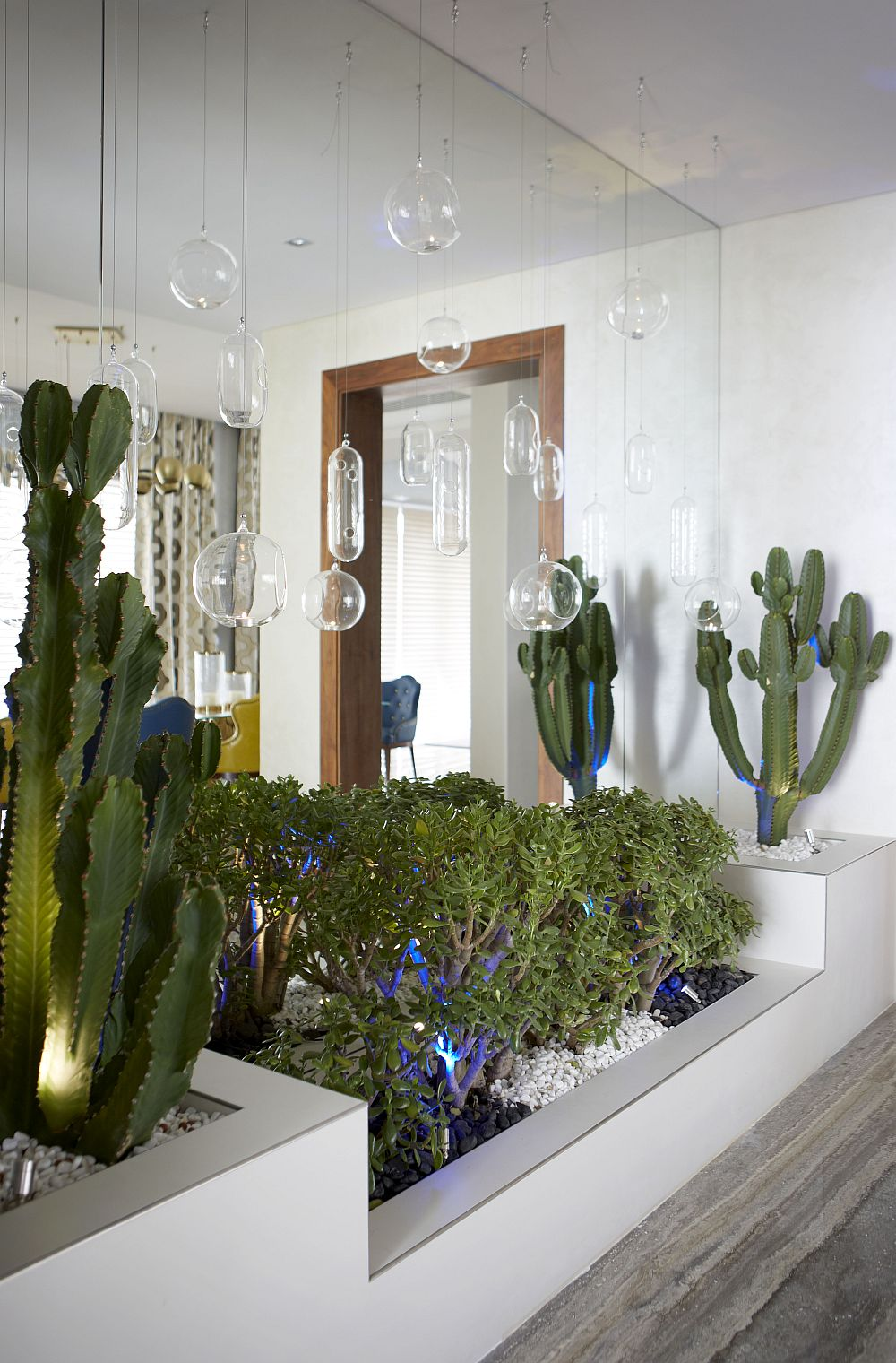 Hangining terrariums and an indoor garden inside the luxurious villa