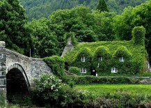 Ivy Covered Cottage 217x155 9 Sweet Stone Cottages for Hermit Wannabes