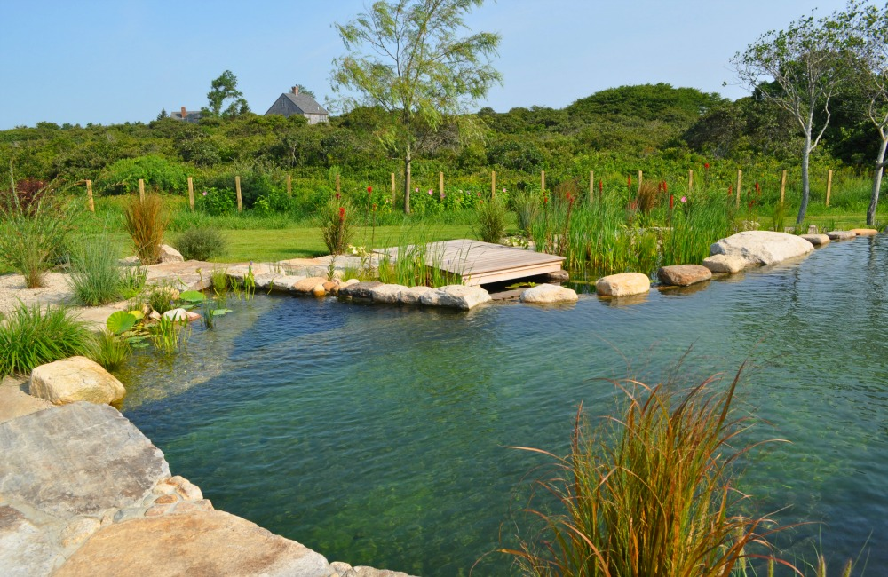 All natural swimming pools for Natural rock swimming pools