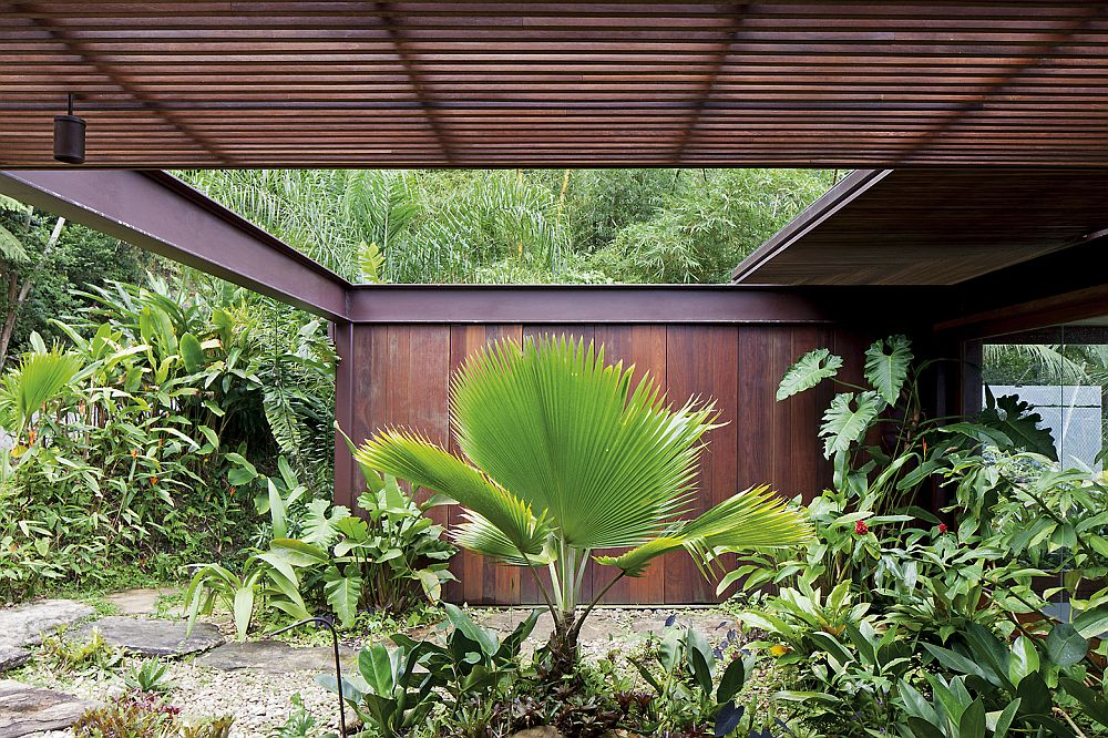 Natural canopy around the stylis Sao Paulo house