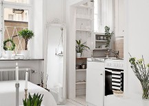 Natural-greenery-adds-color-to-the-interior-217x155