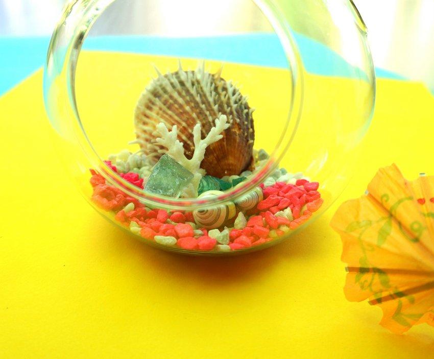 Neon seashell terrarium