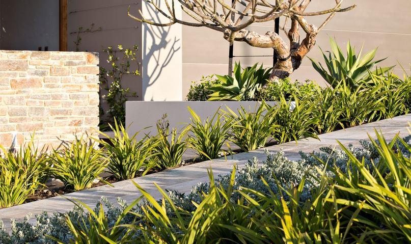Pathway design by Tim Davies Landscaping