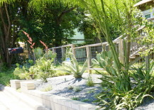 Plants-in-a-variety-of-heights-add-interest-217x155