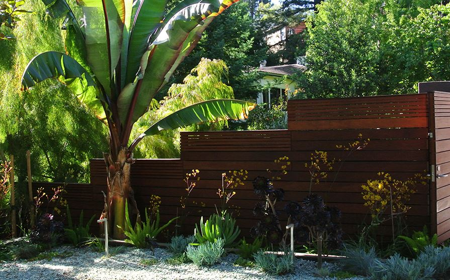 Small Narrow Garden Design Ideas