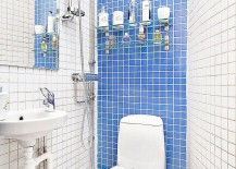 Small blue and white bathroom idea