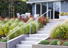Variety of grasses contained by a concrete retaining wall