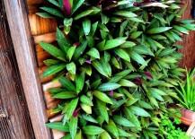 Vertical-palette-garden-from-Freckles-Fluff-217x155