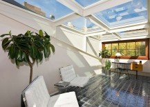 Why not turn the entire roof into one large skylight