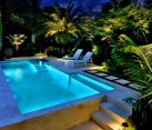 Backyard with an illuminated pool and tropical foliage