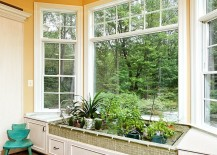 Blend-some-of-your-favorite-plants-with-kitchen-herbs-217x155