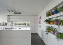 Colorful herb garden brings liveliness to the white contemporary kitchen