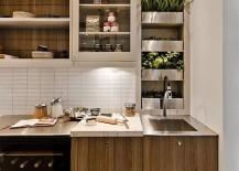 Contemporary-kitchen-with-an-ergonomic-herb-garden-217x155