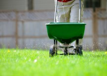 Fertilize your lawn with care