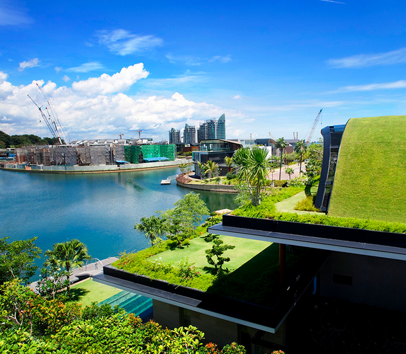 Incredible water—and city—views from the green roofs