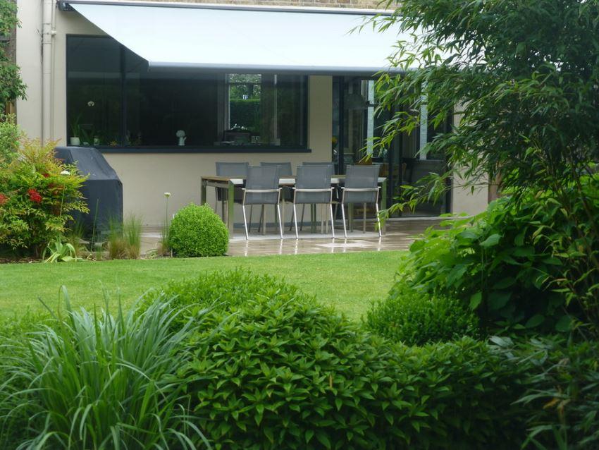 Healthy green lawn beside a modern patio