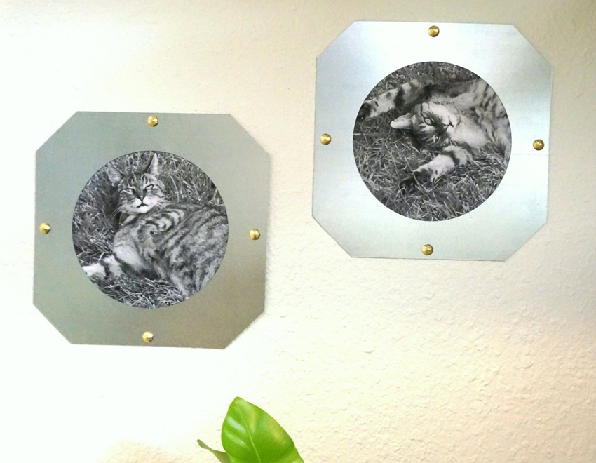 Industrial ceiling collar picture frame