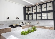 Kitchen-island-with-a-touch-greenery-at-its-heart-217x155