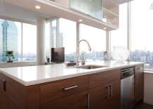 Long Island City Penthouse Gorgeous Open Kitchen