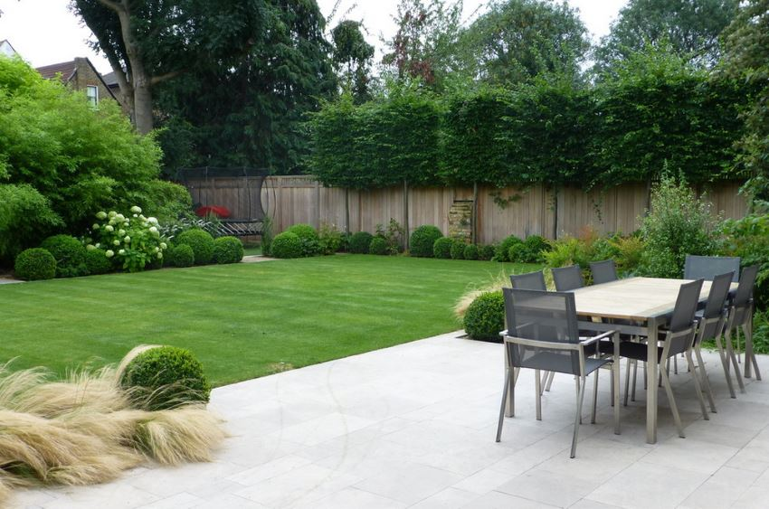 Lush lawn beside a modern patio
