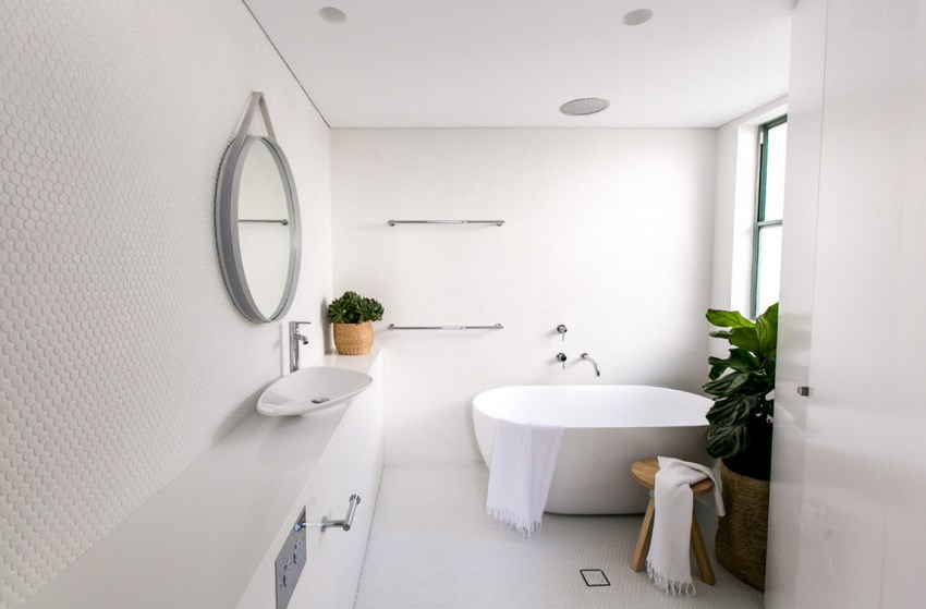 Modern bathroom with green plants